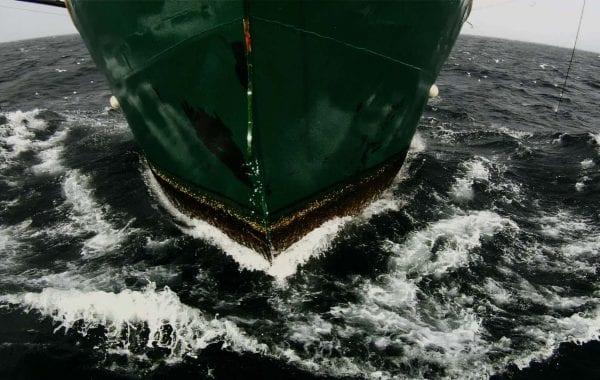 Fisheye Magazine | Bienvenue à bord du Leviathan
