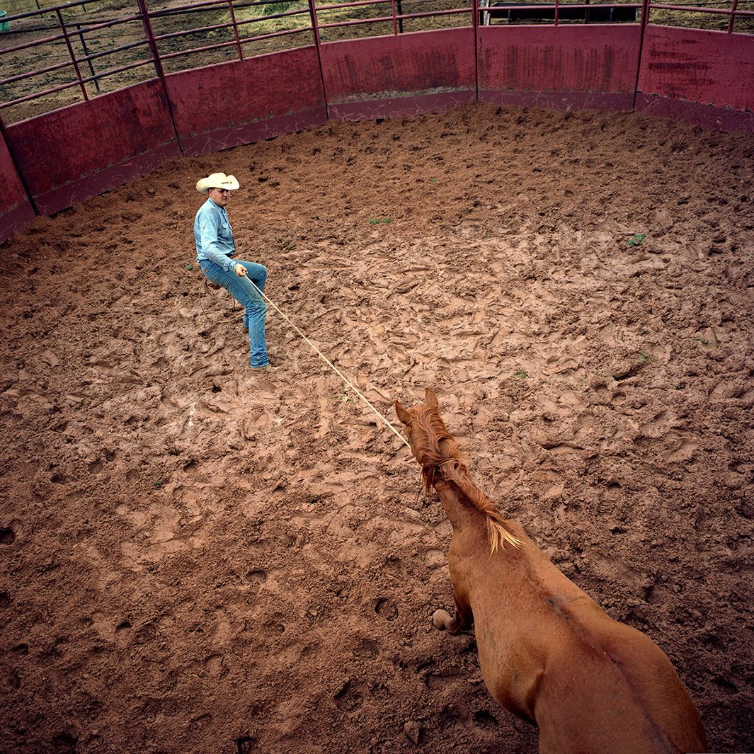 Randal Gates breaking in a colt, JA Ranch, Texas, 2003. © Peter Byrne.