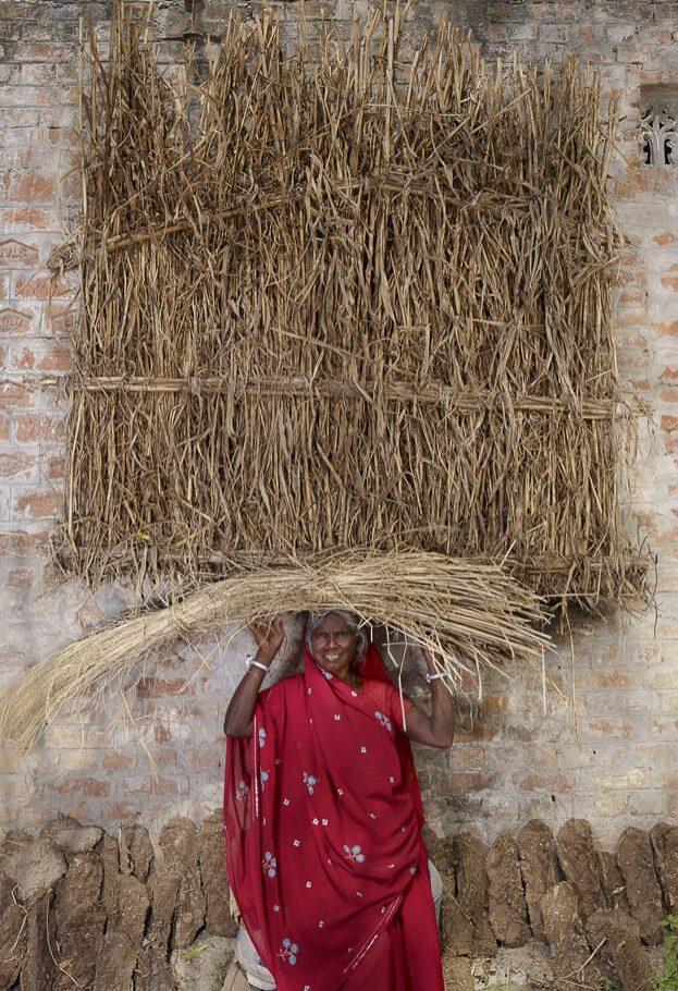 Bassanti, Inde, 2010 ©  Floriane de Lassée