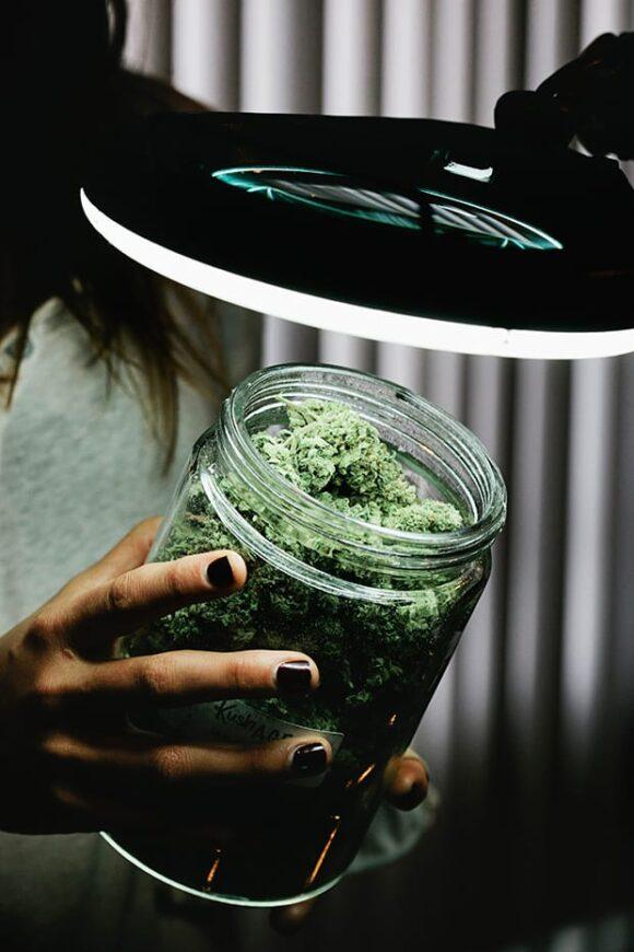 Fisheye Magazine | Dans les coulisses de l'industrie du cannabis