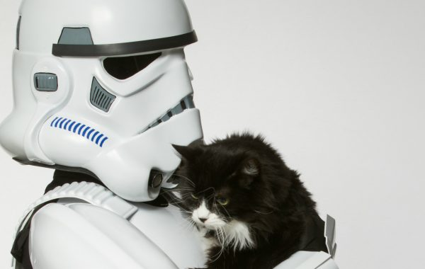 Fisheye Magazine | Star Wars pour l'adoption des animaux