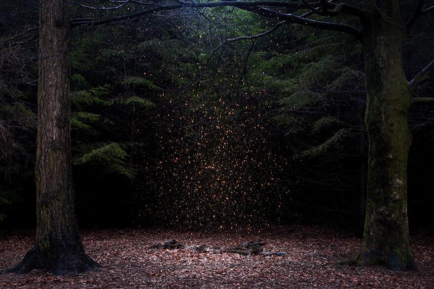 """Image extraite de la série """"Stars"""" / © Ellie Davies"""