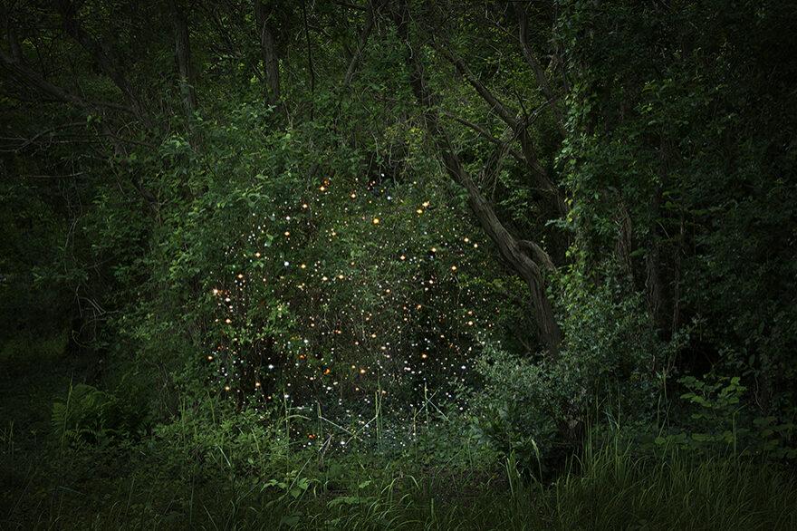 Stars-2_fisheyelemag
