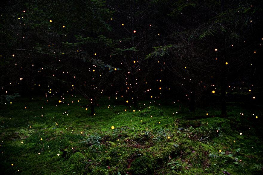 Stars-5_fisheyelemag