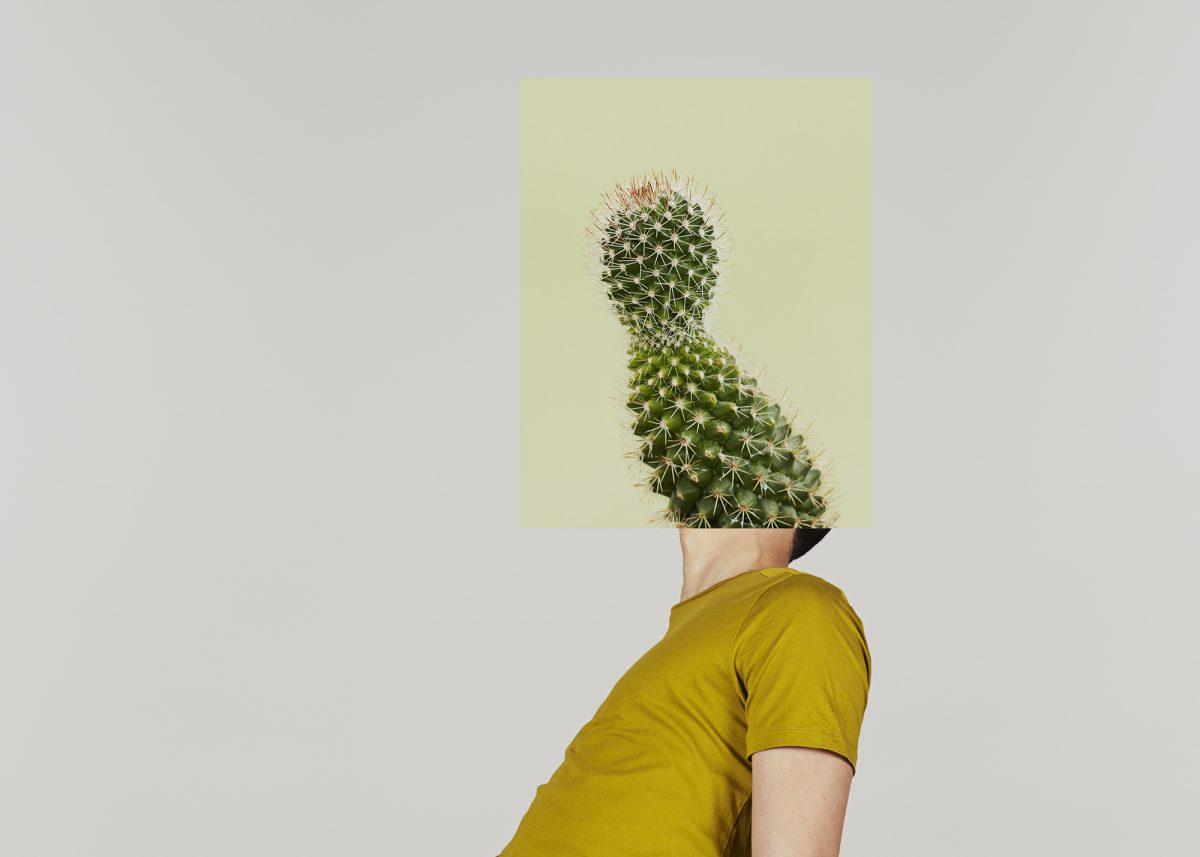 """Image extraite de la série """"The Eureka Effect"""" / © Alma Haser"""