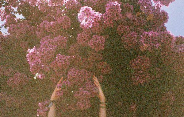 Fisheye Magazine | Les échappées belles de Natalie Wardle