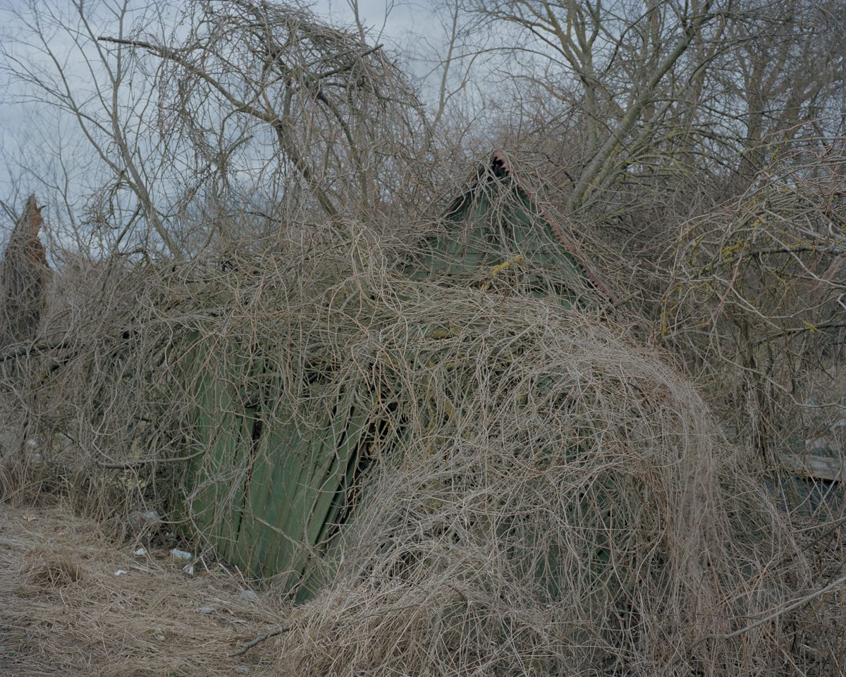 Abandoned allotments in Voleri, 2015.