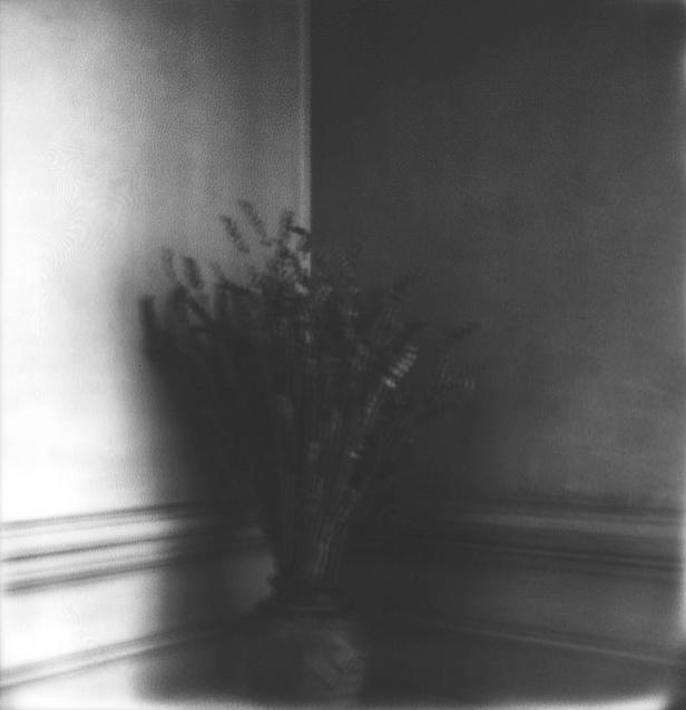© Bruno Haumont