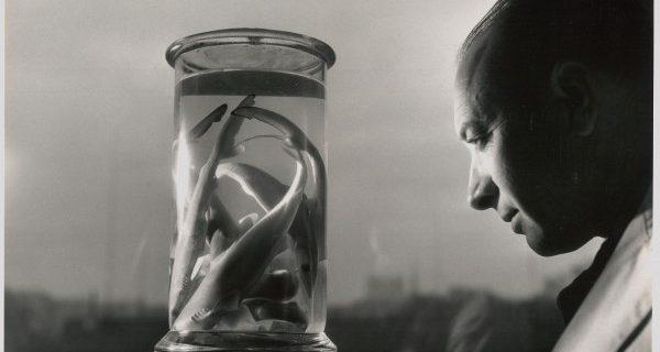 Fisheye Magazine | Robert Doisneau, un photographe au muséum
