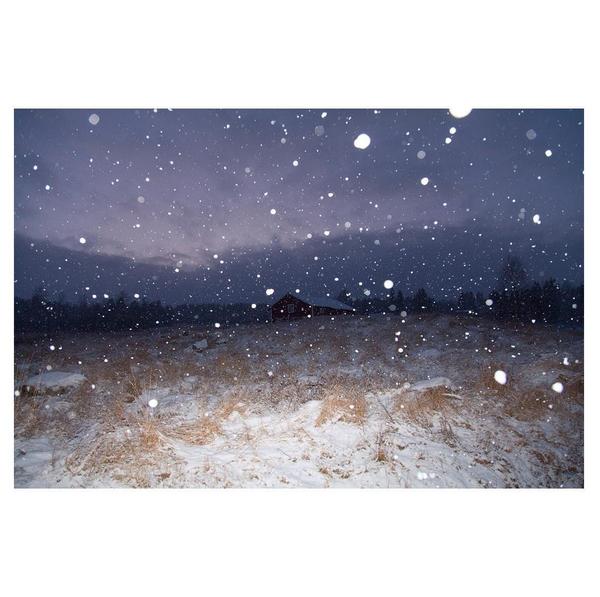 © Isabella Ståhl / Instagram