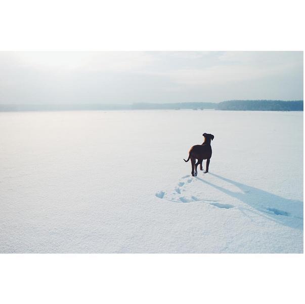 © Agata Wruk / Instagram
