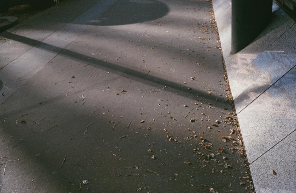 © Camille Cornillon