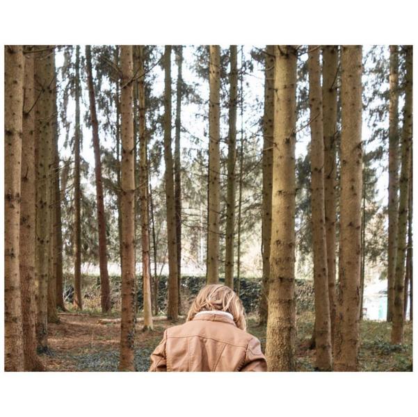 © Vogelmurr / Instagram