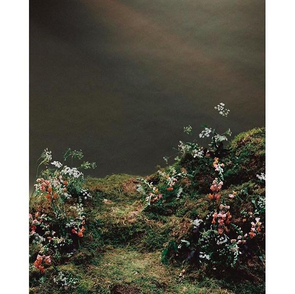 © Riley Messina / Instagram