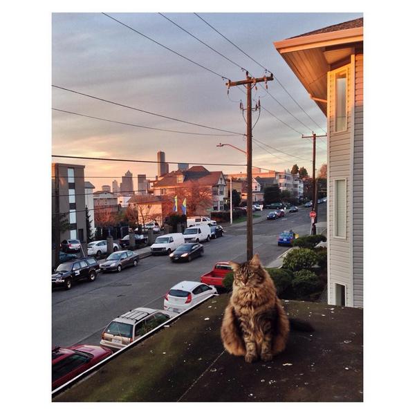 © Jenny Riffle / Instagram