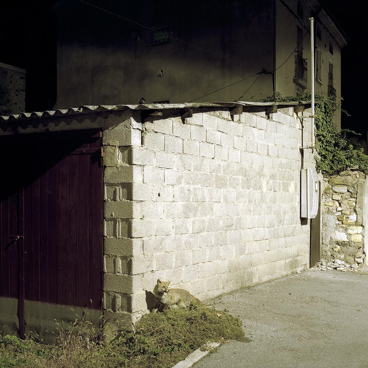 © Marc Cellier