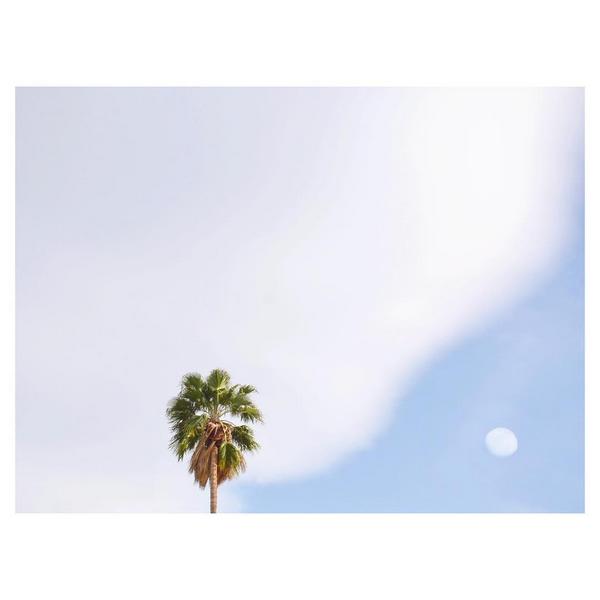 © Hayley Eichenbaum / Instagram