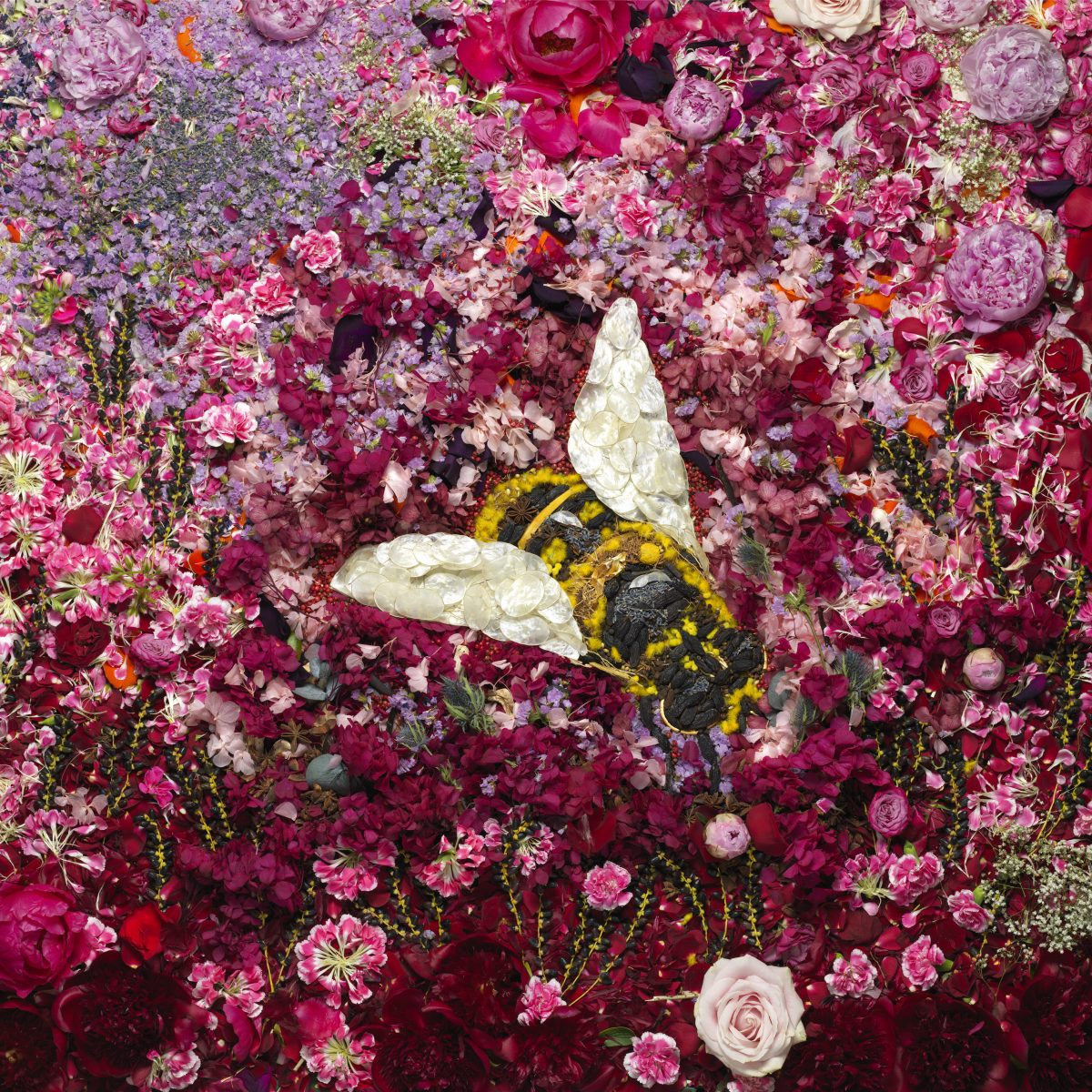 """Bee"" © Vik Muniz"