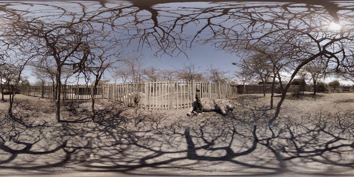 "Extrait du documentaire ""The Ark"" de Eline Jongsma & Kel O'Neill"