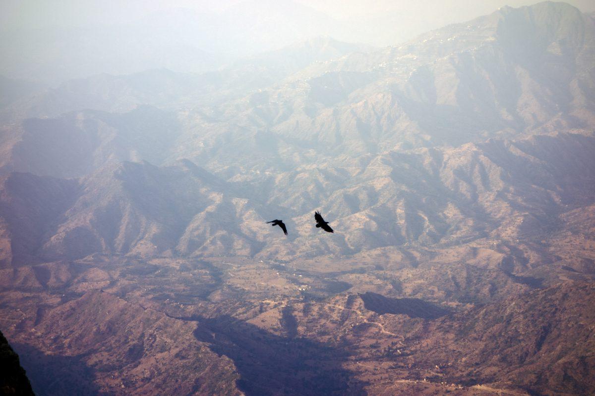"Extrait de ""Northern Yemen"" © Yumna Al-Arashi"
