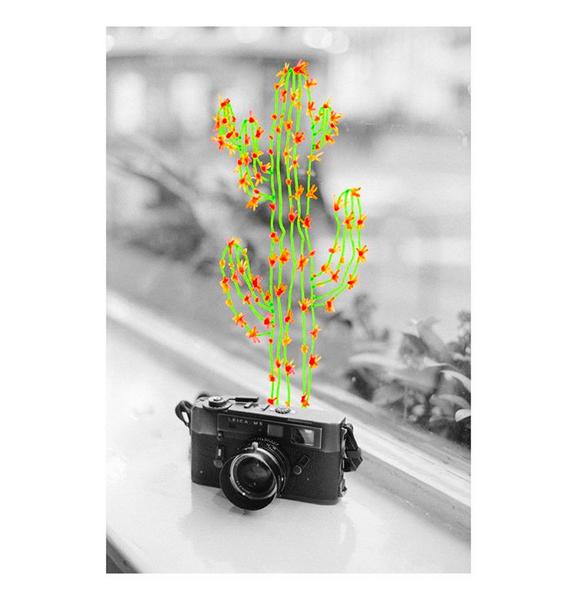 © en voiture murène / Instagram
