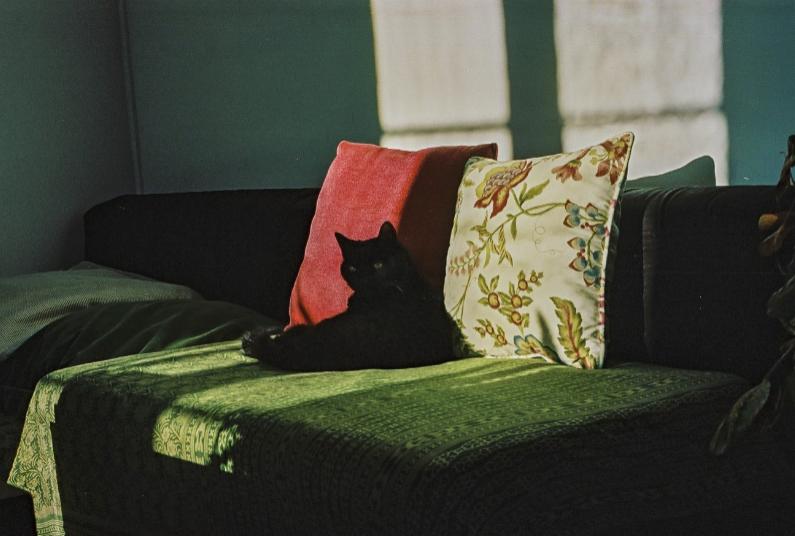 © Yannick Dhiser