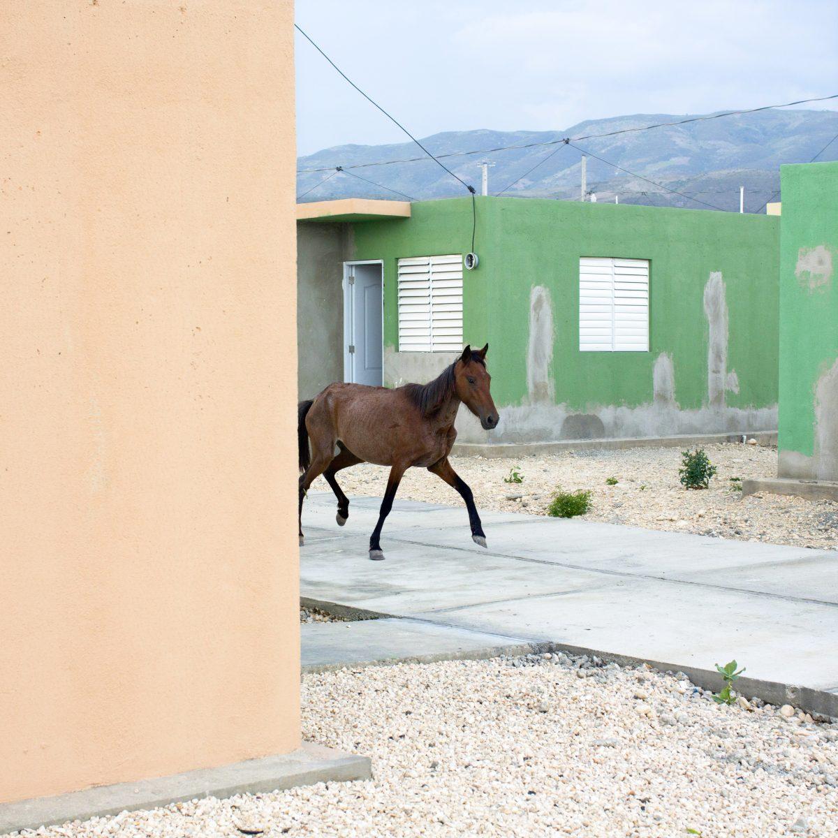 "Extrait de ""Haïti"", © Corentin Fohlen | Texte : Marie Moglia"