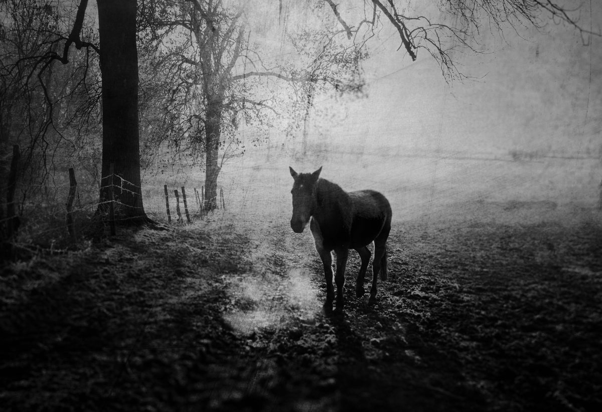 """Extrait de """" STRATES - Les Terres"""", © Vincent Descotils"""