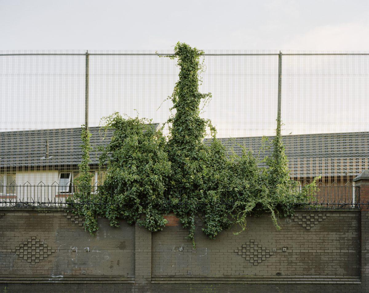 """Extrait de """"Peacewall"""", © Philippe Grollier, lauréat de la 1ere édition du prix FIDAL Photo"""