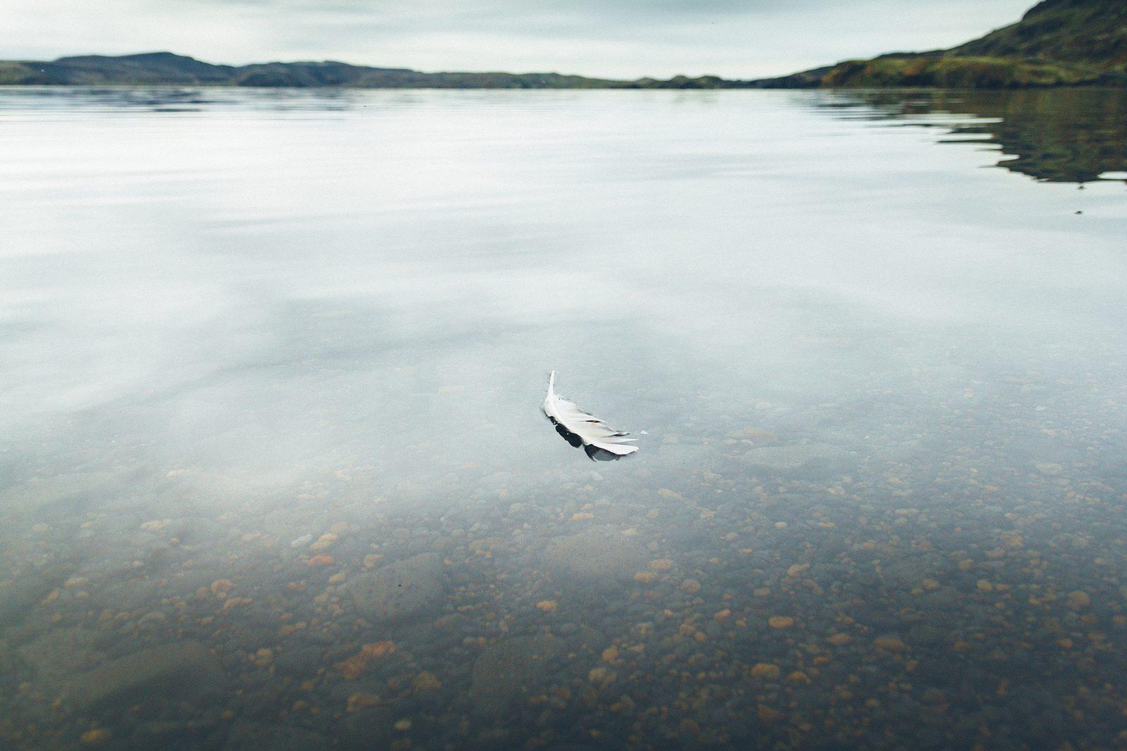 Troisième prix, © Matthieu Robinet