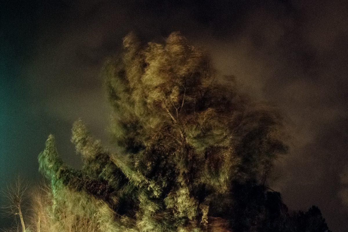 Cinquième prix, © Enrico Di Nardo