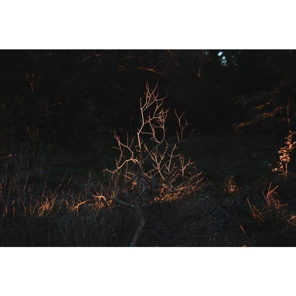 © Luciana Demichelis / Instagram