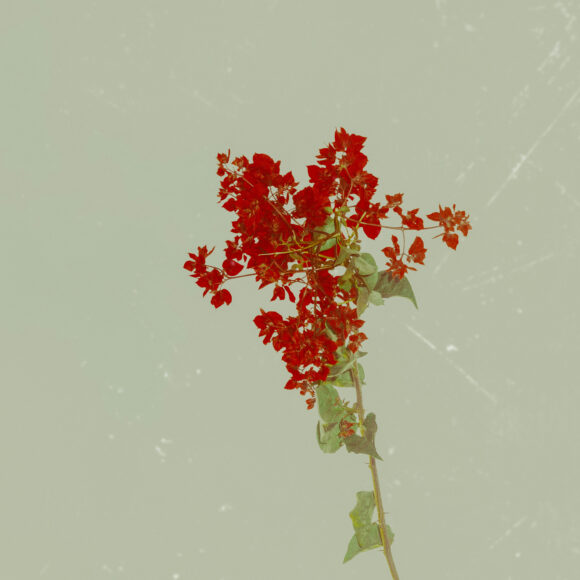 "From ""Postcards from Rishikesh"" © Debmalya Choudhuri"