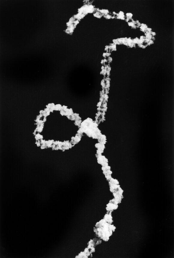 Renato D'Agostin_7439_White Sands Missile Range, New Mexico_Courtesy Galerie Thierry Bigaignon
