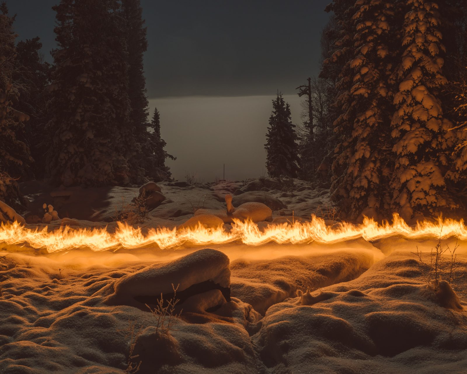 From Slash and Burn © Terje Abusdal