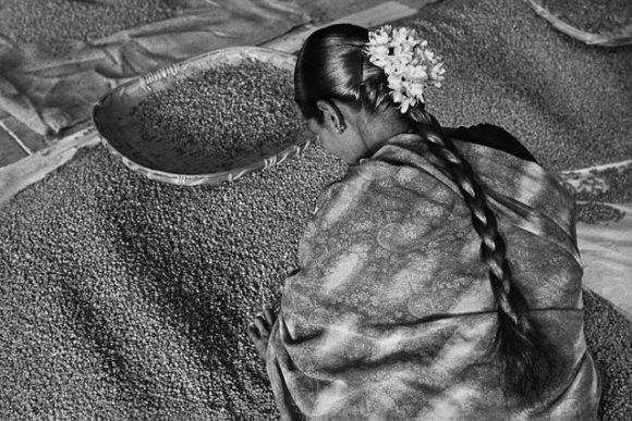 © Sebastião Salgado / Amazonas images.