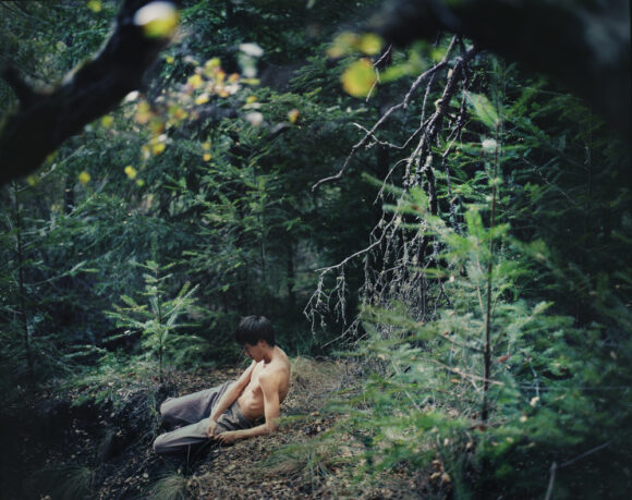 """In the Forrest"" From ""Beast by the Waterfall Guesthouse"" © Wenxin Zhang"