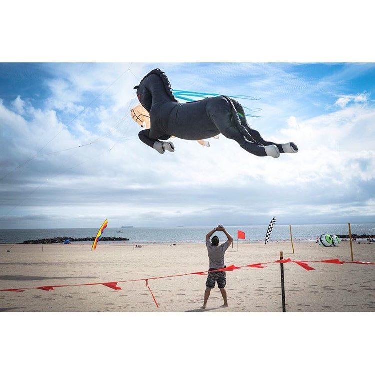 Cedric Roux- Instagram-FE