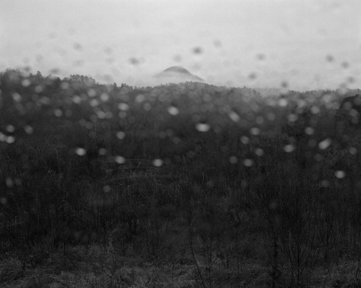 "From ""Jasper"" © Matthew Genitempo"