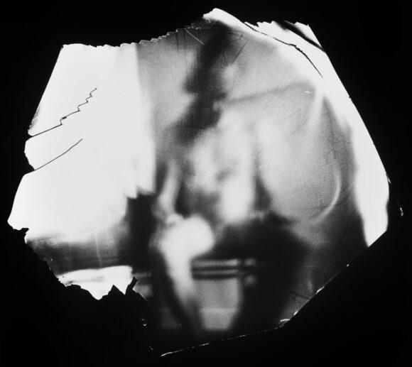 © Danielle Lessnau