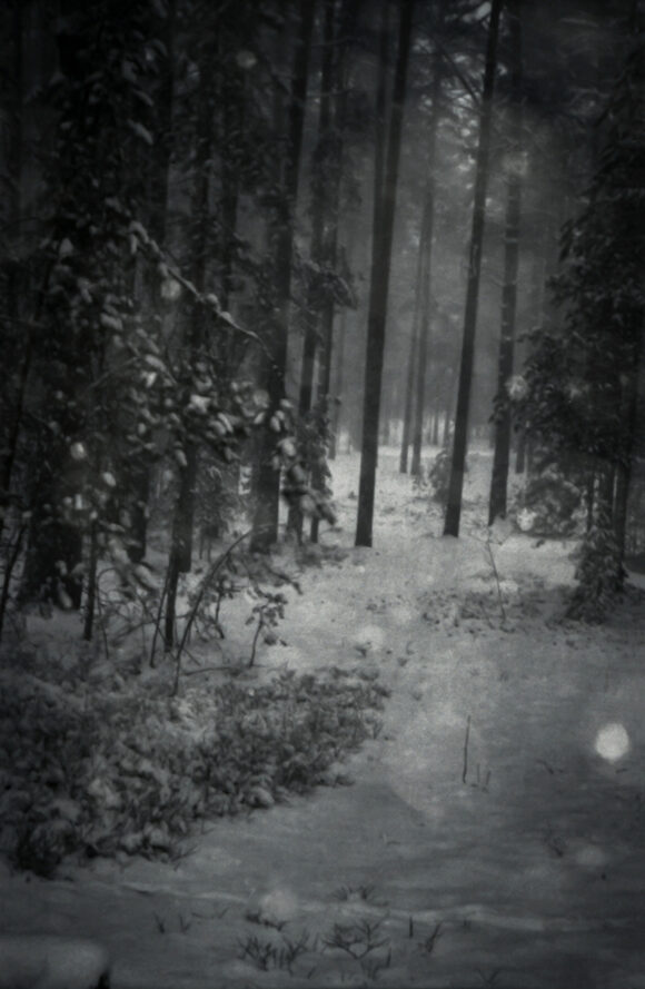 © Elvira Kolerova