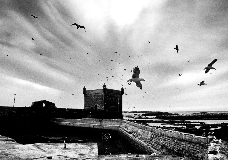 © Zakaria Wakrim