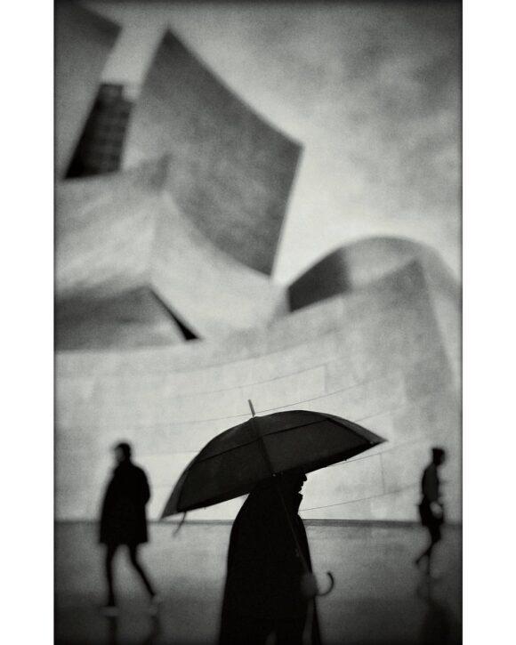 © David Ingraham / Instagram