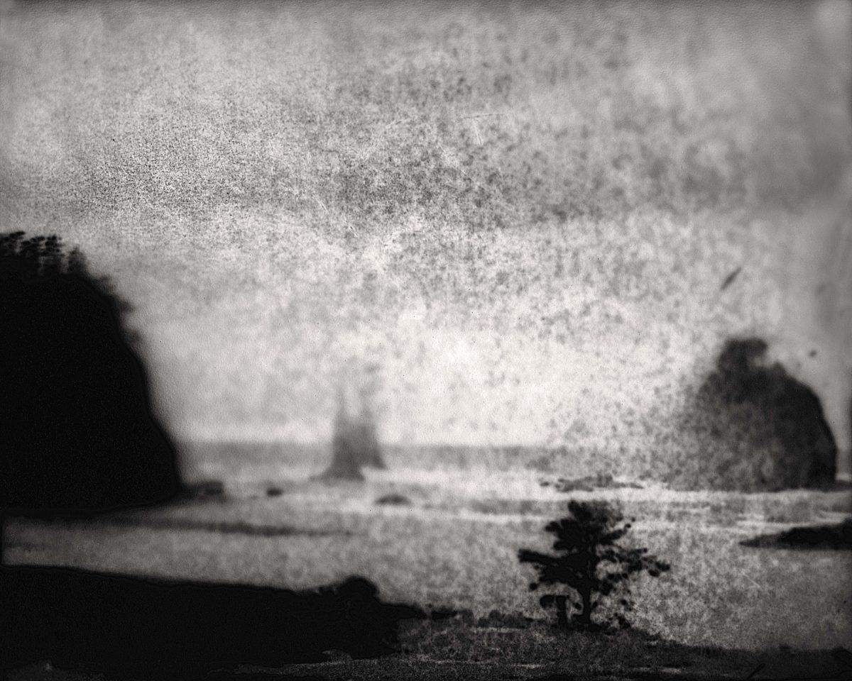 © Marcus DeSieno
