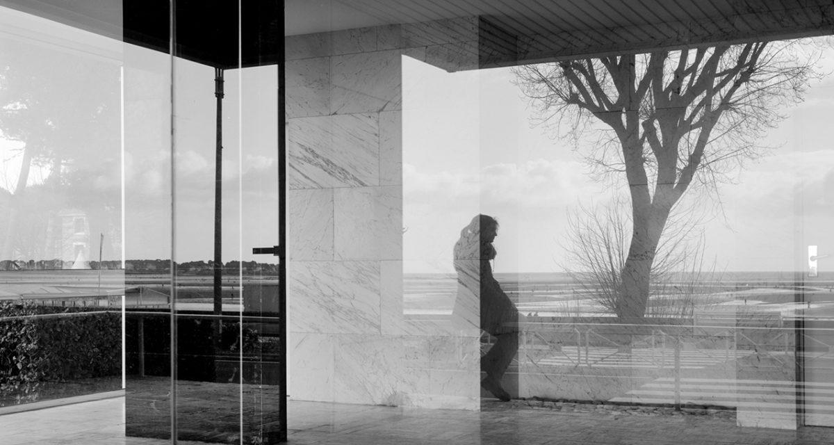 © Samuel Hense