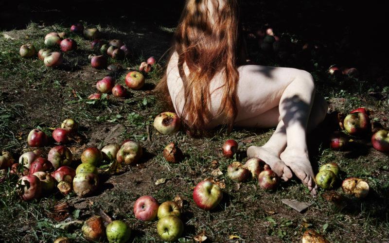 © Jocelyn Lee, Courtesy Pace/MacGill Gallery