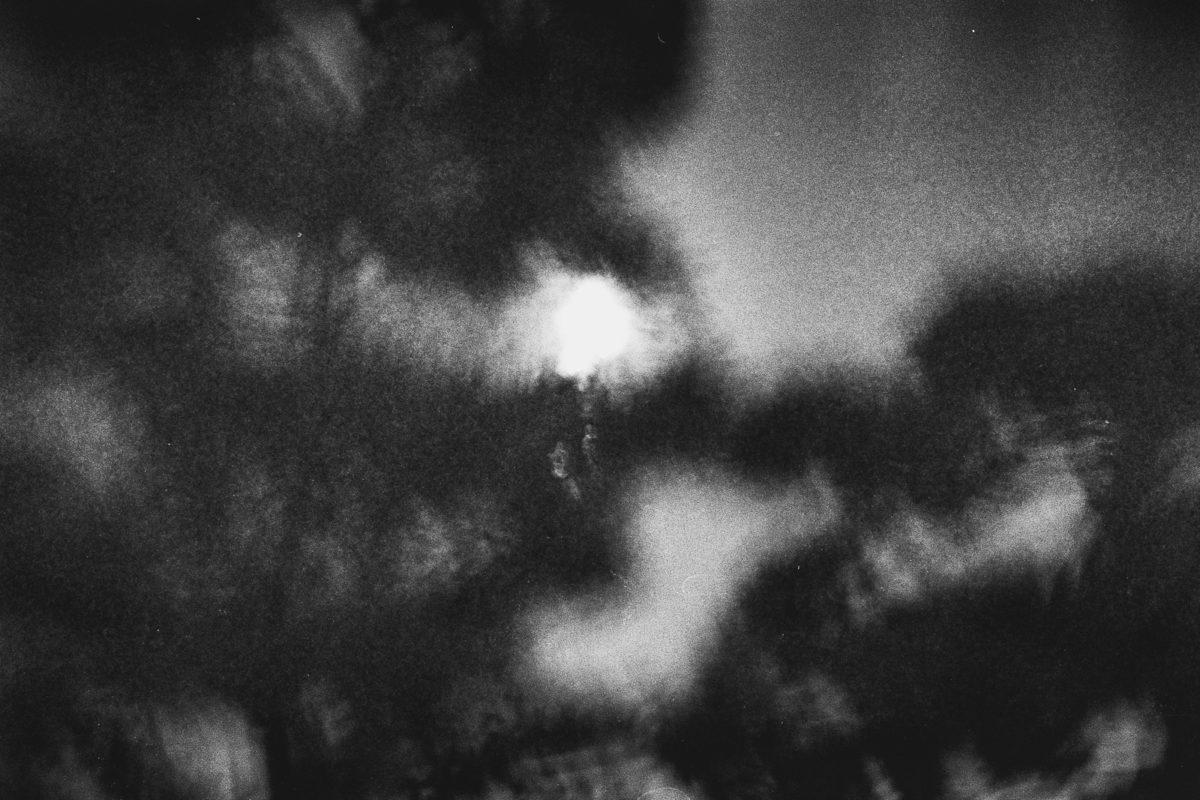 © Margaret Lansink