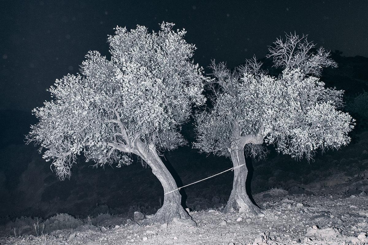 © Yorgos Yatromanolakis