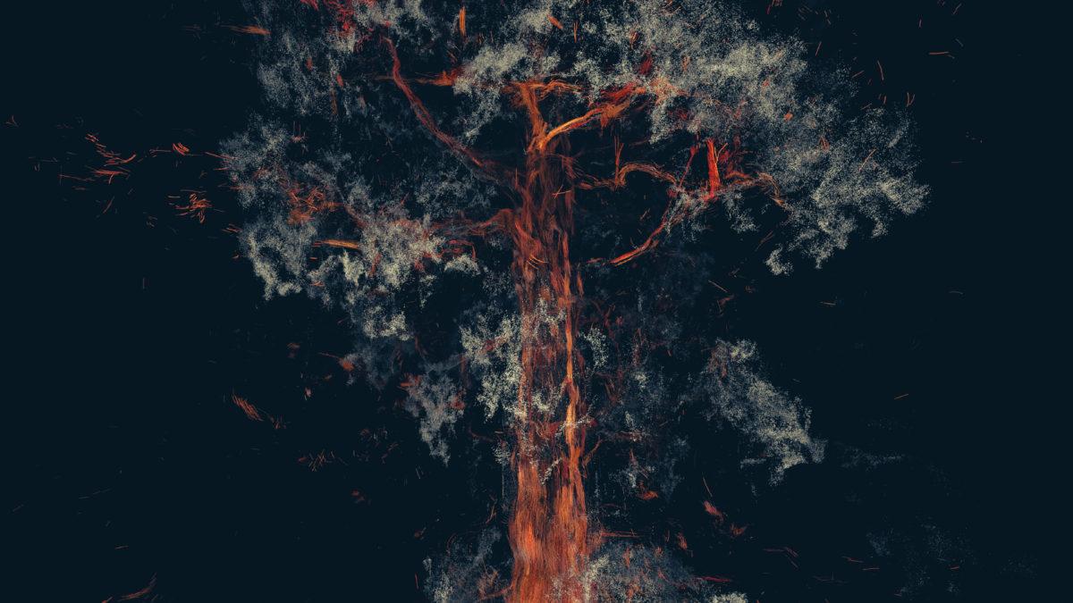Treehugger_Wawona_18