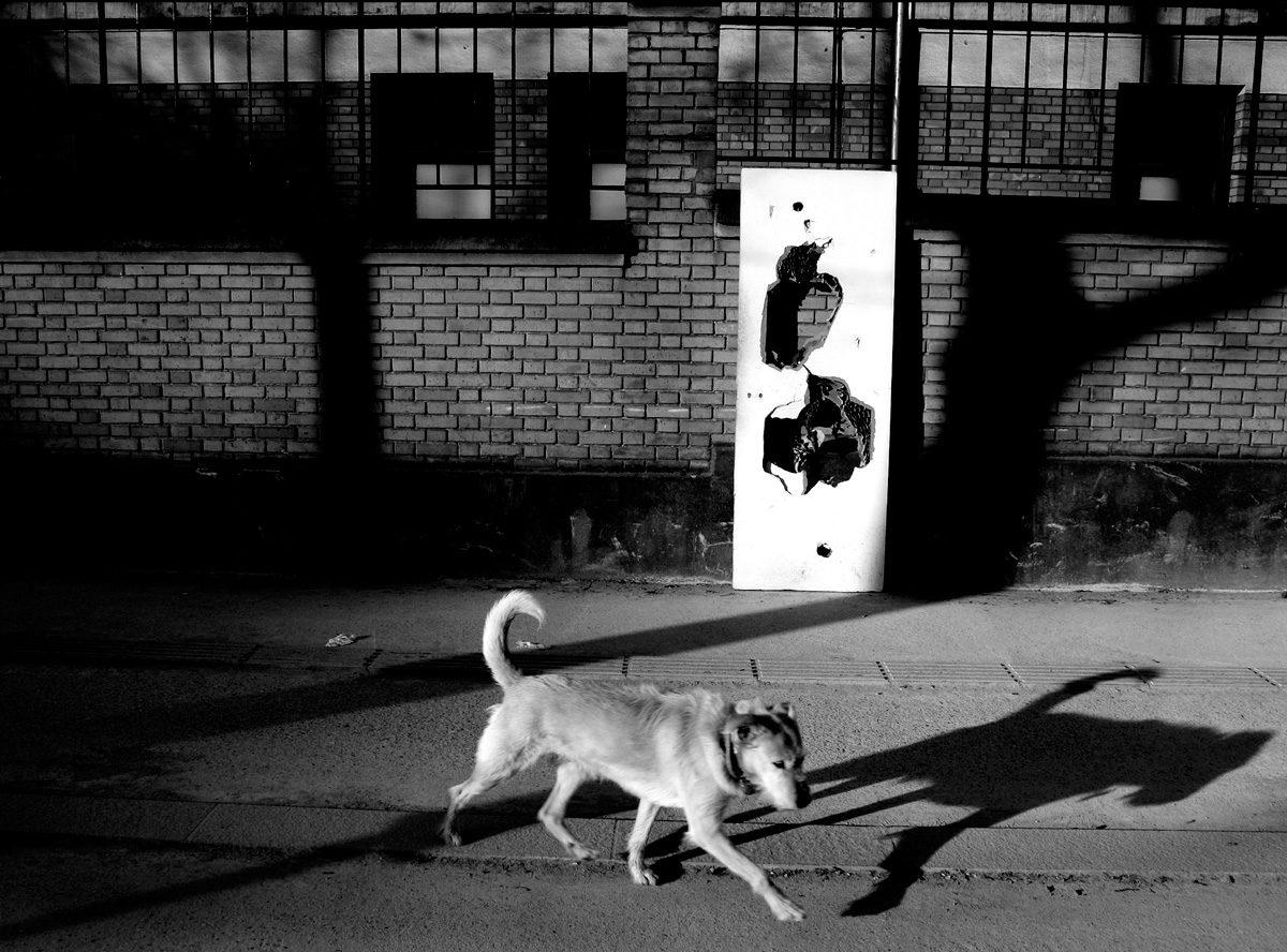 © Geoffroi Caffiery